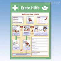 Erste-Hilfe-Schild nach BGI 510-1 DIN A 2